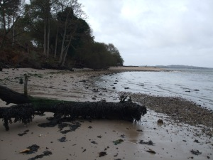 Poole-side on Brownsea.